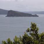 Lion Island from Box Head bushtrack