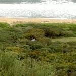 Tallow Beach Campsite from Hawke Head Drive