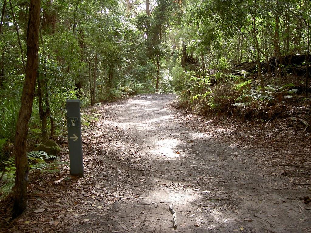Little Beach service trail