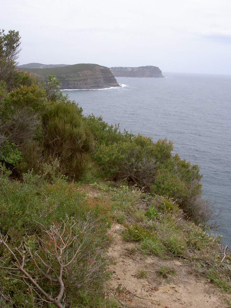 Bouddi Coast