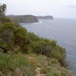 Bouddi Coast (21464)