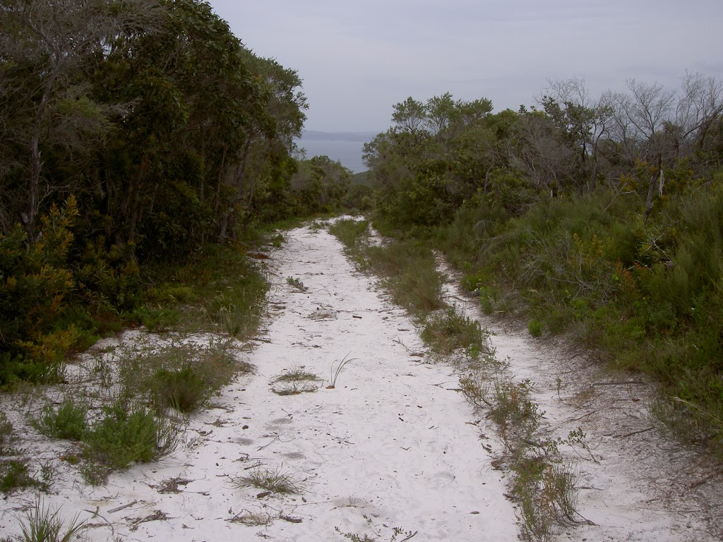 Sandy service trail between Bombi Point Track and Third Point Tracks (21485)