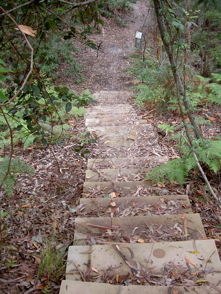 Steps down from picnic area