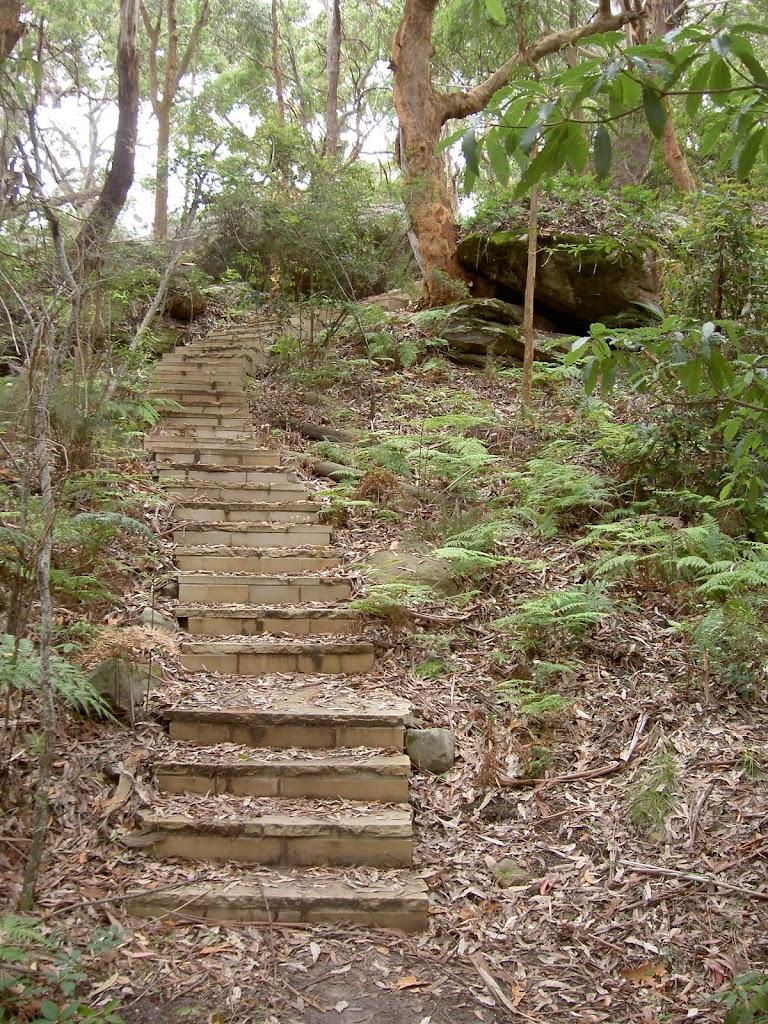Steps to Dingeldei Picnic Area
