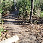Start of the Bulgandry track (216695)