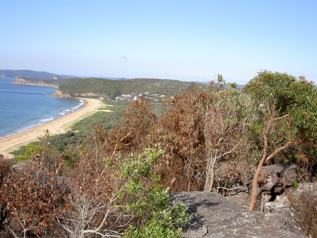 Putty Beach from Jacqueline Ave lookout