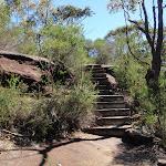 Steps on Tony Doyle Track (218042)