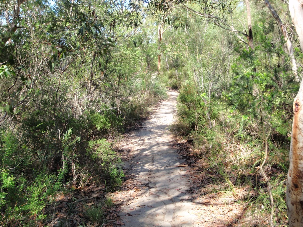 Path to Warrah Lookout (218135)