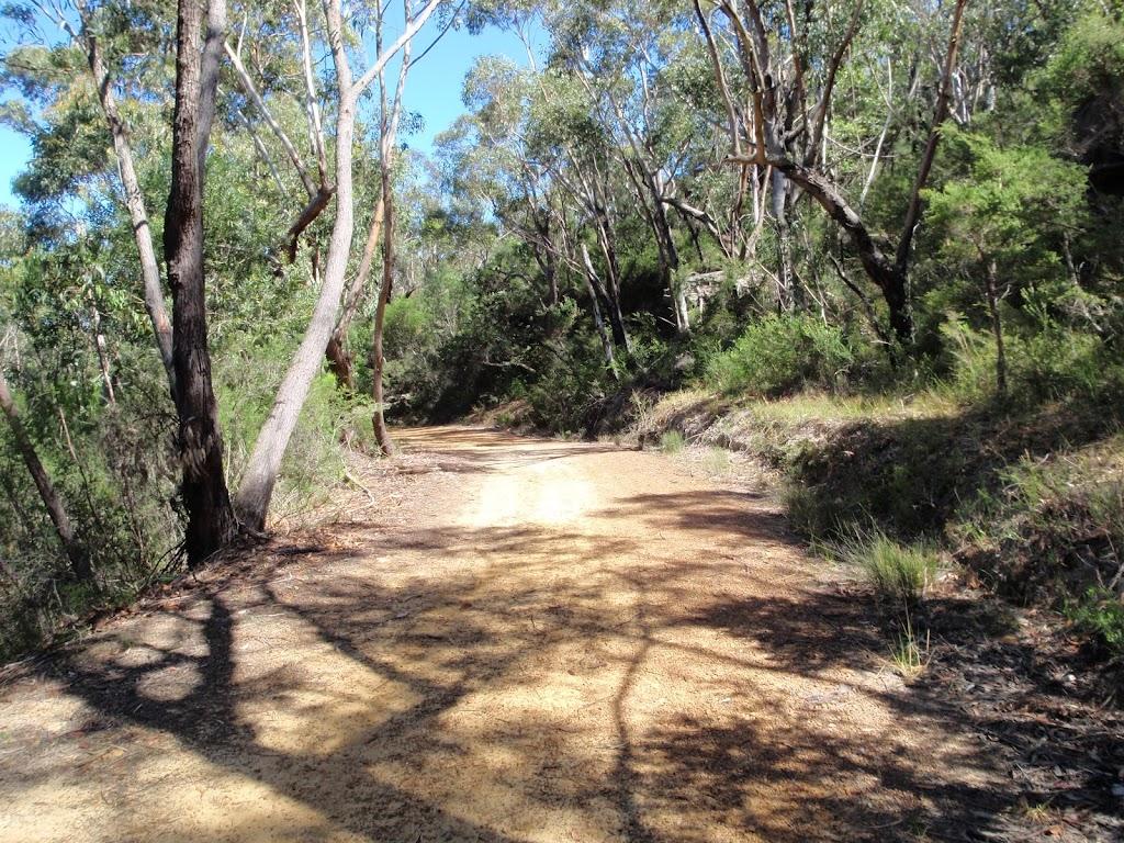 Walking along the Pearl Beach / Patonga fire trail