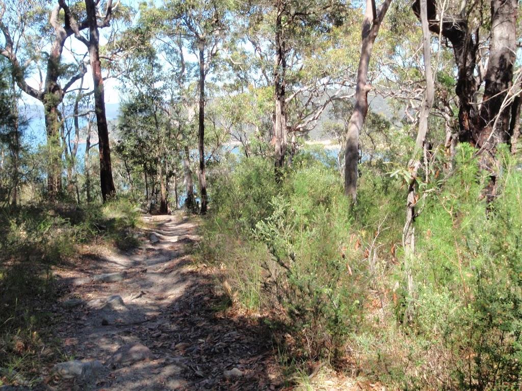 Track along ridge
