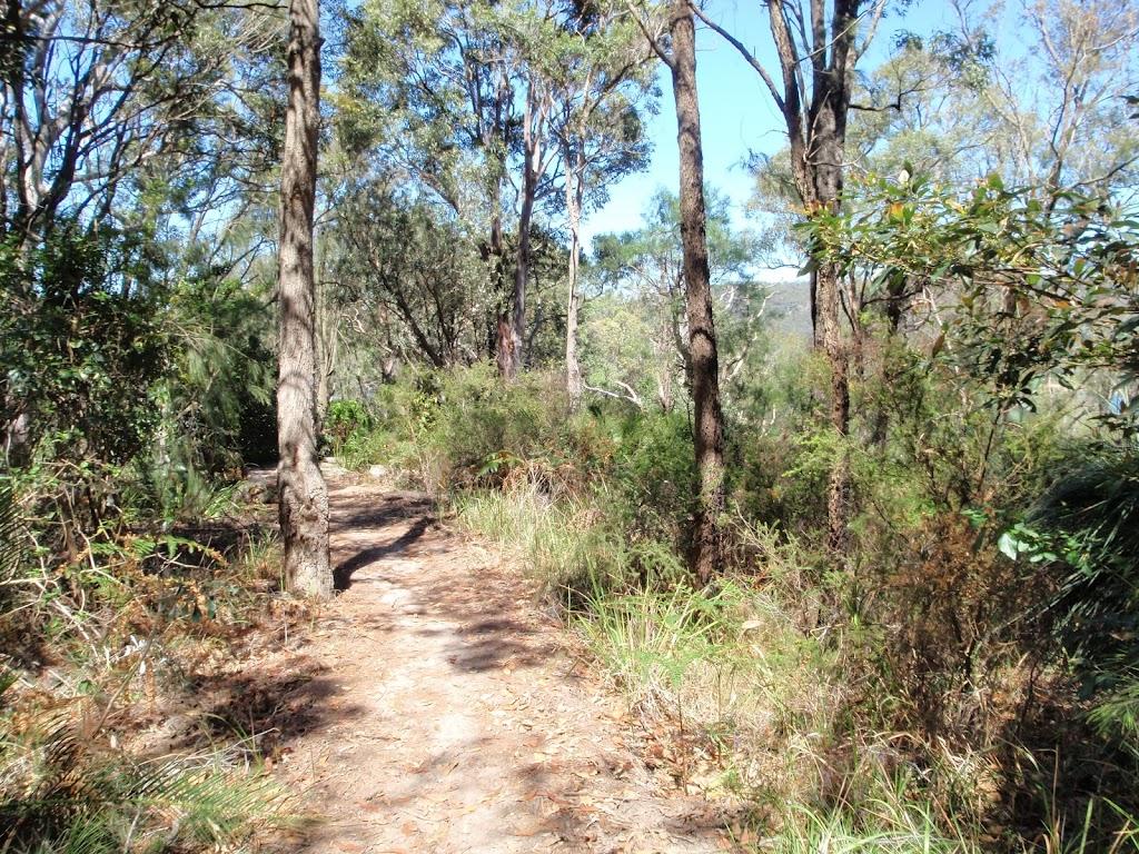 Patonga Track