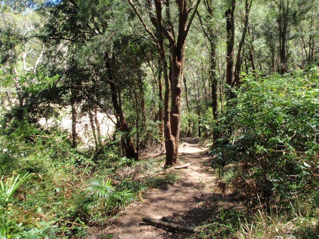 Near the bottom end of Patonga track