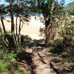 Bottom of Patonga Track (218894)