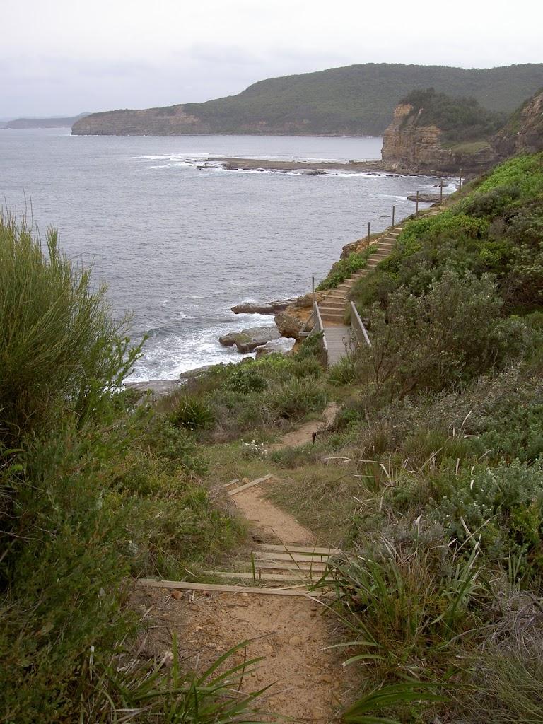 Track across Headland (21926)