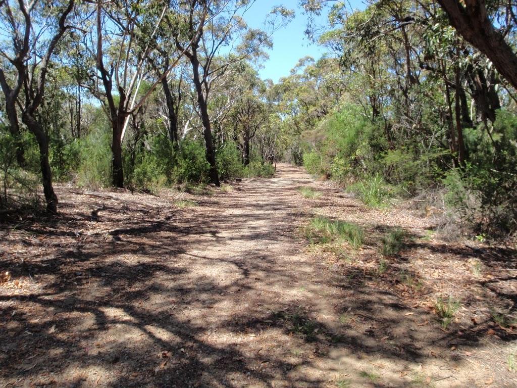 Trail near Warrah Lookout