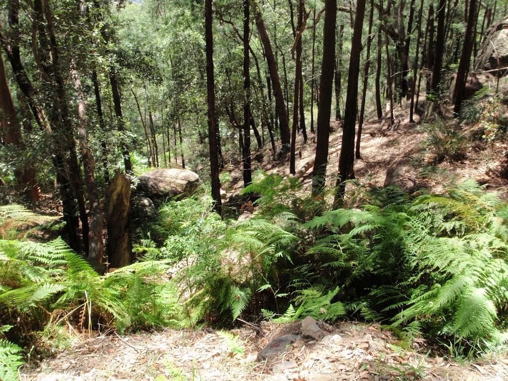 Steep gully beside trail