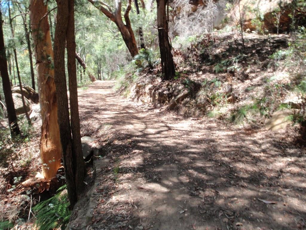 Winding along the Pearl Beach / Patonga fire trail