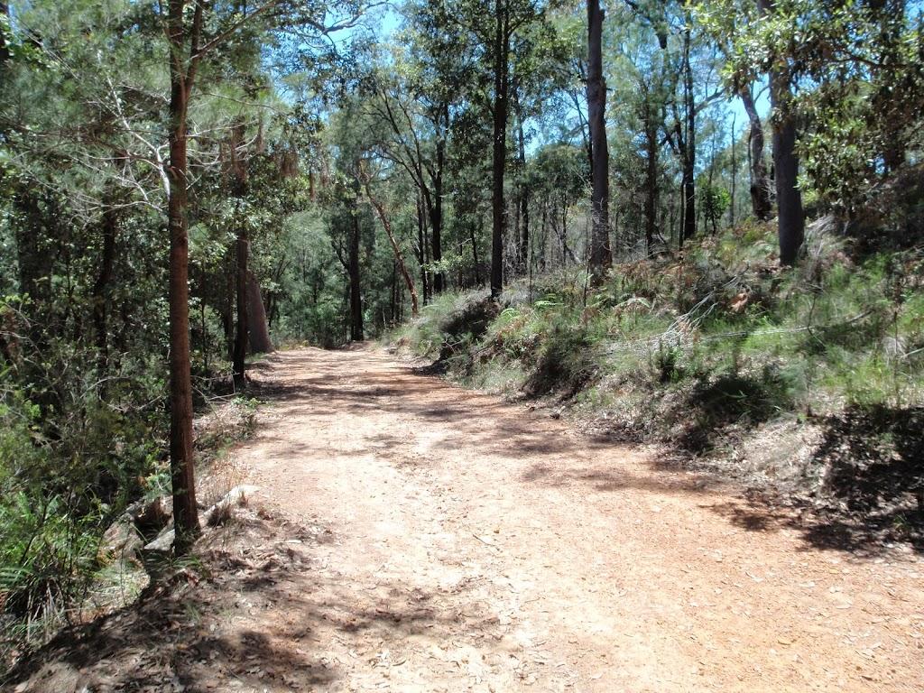Along Pearl Beach / Patonga fire trail