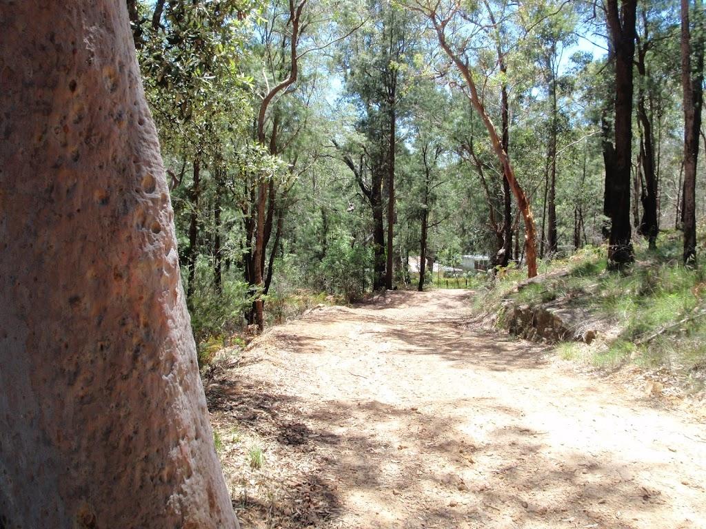 Pearl Beach / Patonga fire trail
