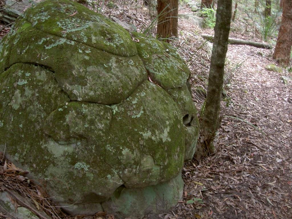 Turtle Shell Rock