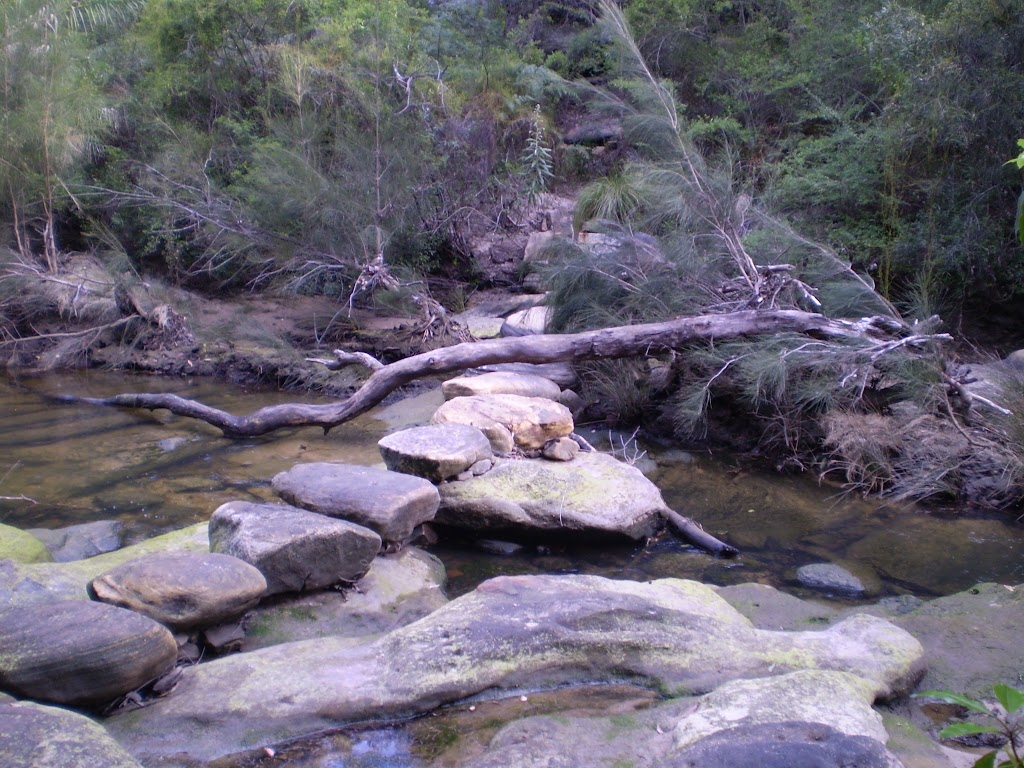 Bungaroo Track Stepping Stones (22071)