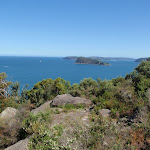 Lion Island and Barrenjoey