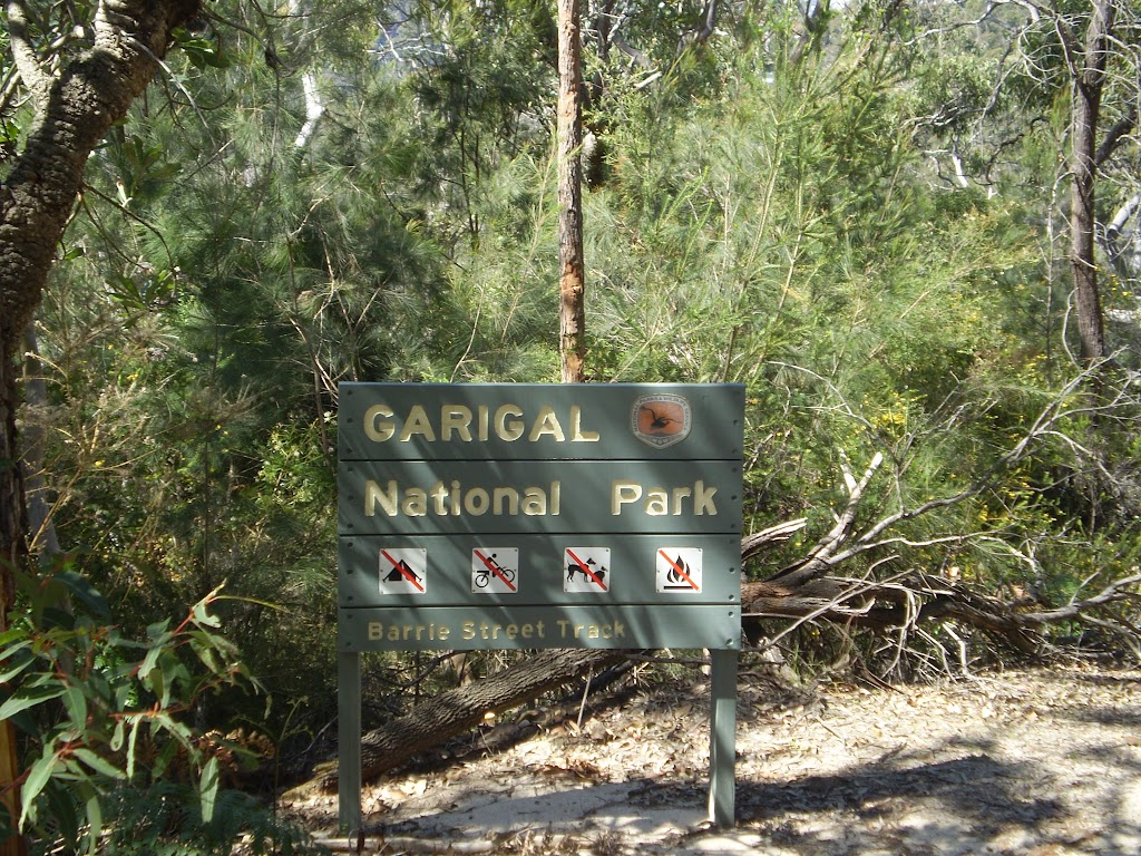 Passing a Garigal National Park sing