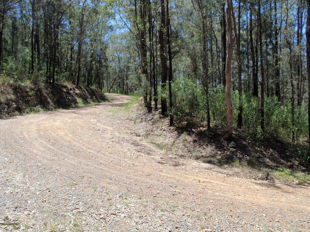 Sharp bend near bottom of Donny's Track (223874)