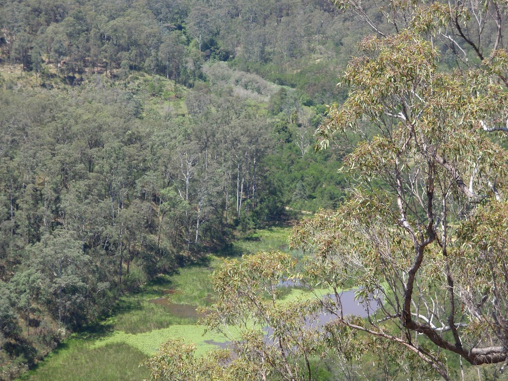 Looking down on Chaselings Run