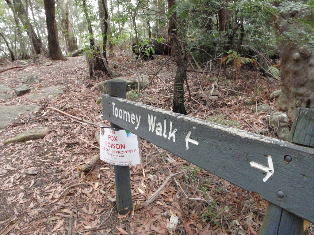 Toomey walk sign (225772)