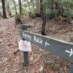 Toomey walk sign