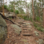 Steps on Graves Walk (227044)