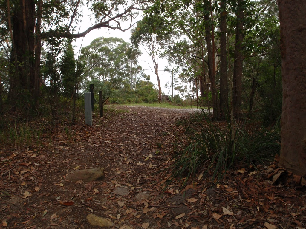 Mouat Walk opening up to the St Johns Lookout Picnic area