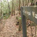 Signpost Guringai Walk