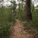 Mouat walk track (227947)