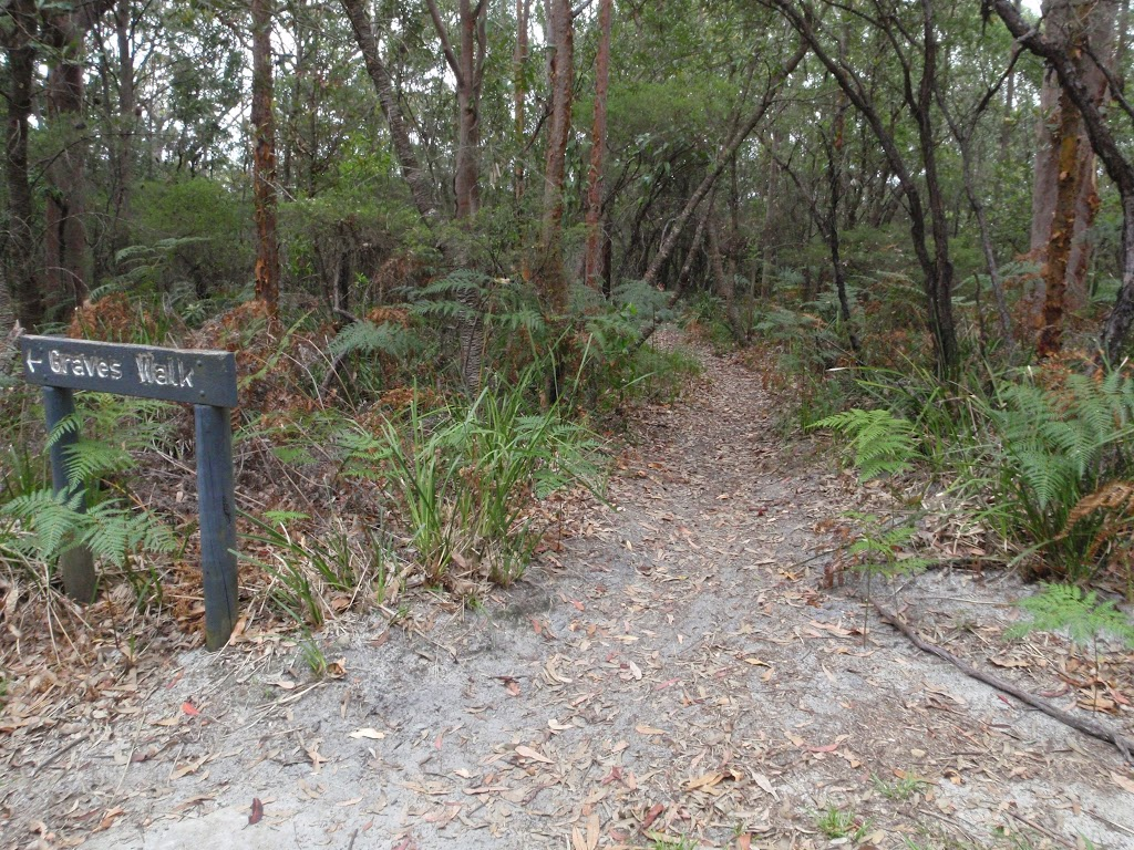 Intersection of Graves Walk and Maidens Brush management trail