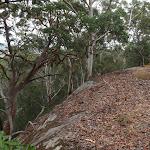 Steep cliff beside Mouat Walk (228172)