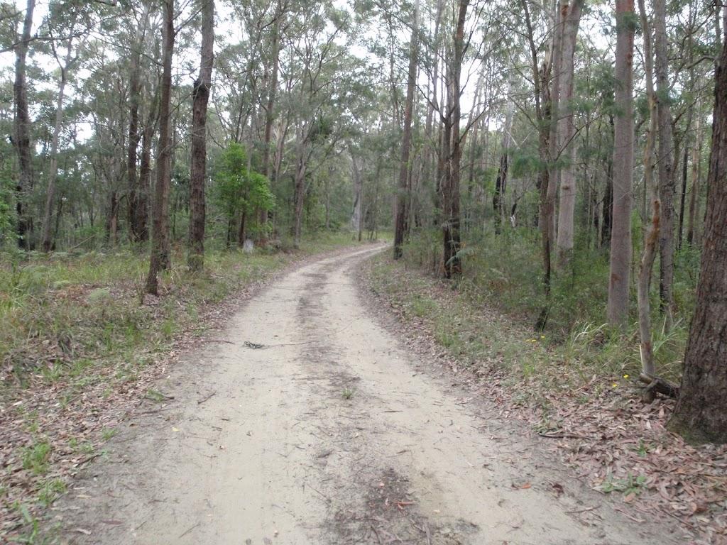 Toomeys Rd trail