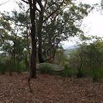 View above Marana Rd (228475)