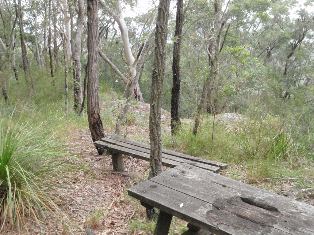 Old Picnic Table and bench