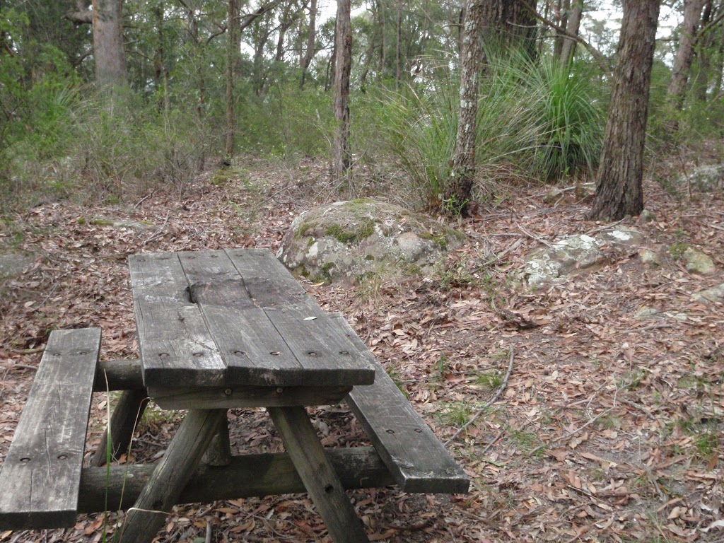 Old Picnic Table