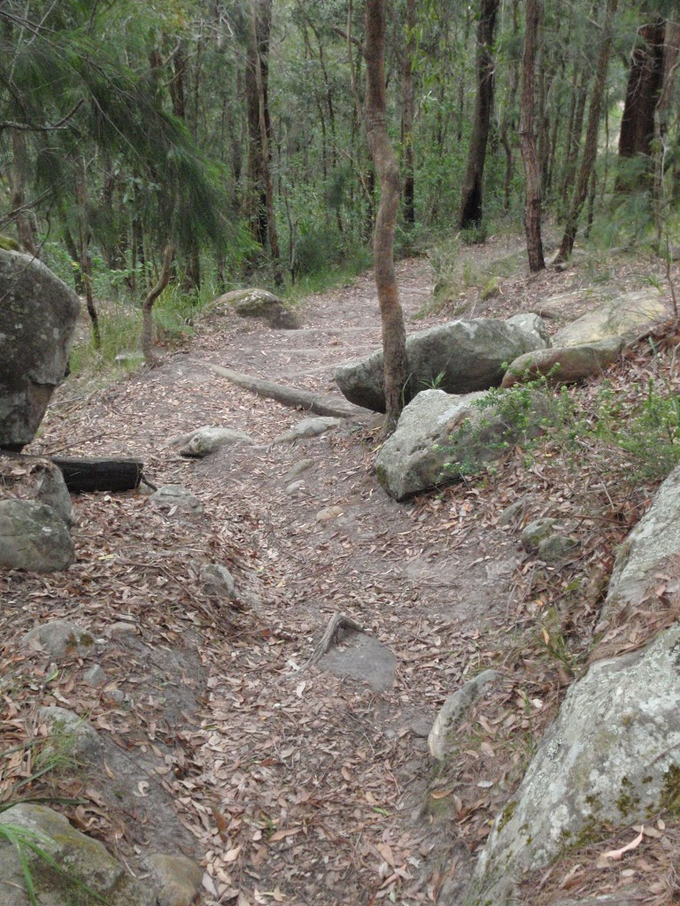 Track near the Mouat trail picnic table