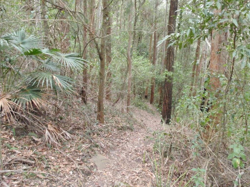 Narrow Link track