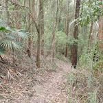 Narrow Link track (229759)