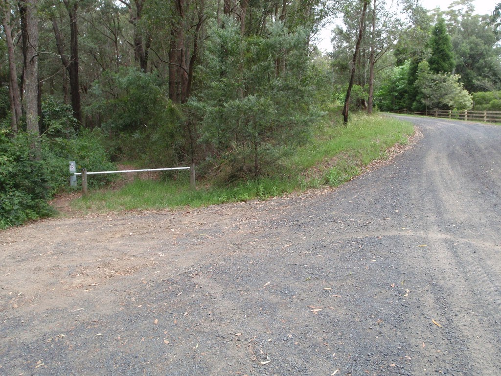 Start of Taylors Rd lower trail
