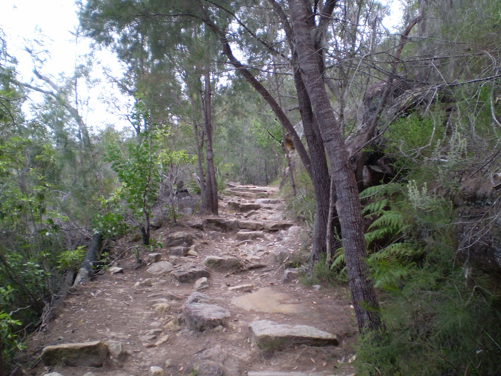 Following the rocky bushtrack (23109)