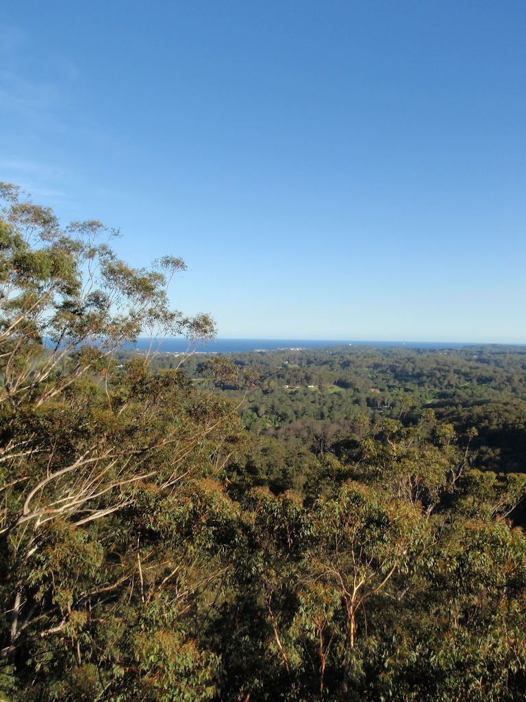 View from St Johns Lookout (232714)