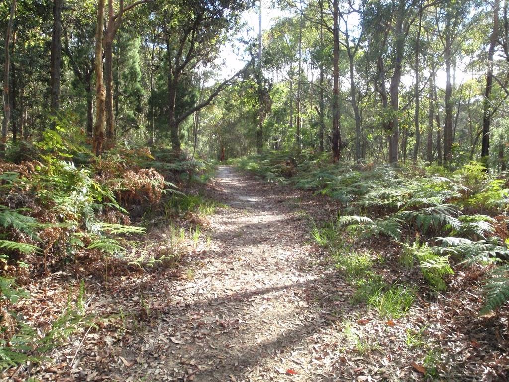 Kanning Walk (233316)