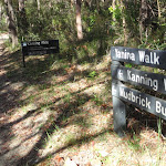 Int of Kanning and Yanina walks (233744)