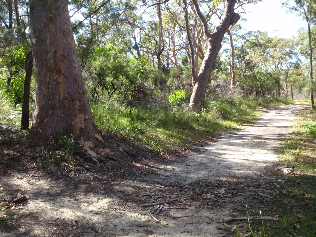 Sid Pulsford Walking trail (233981)